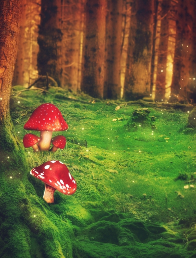 Magical forest with mystical mushrooms