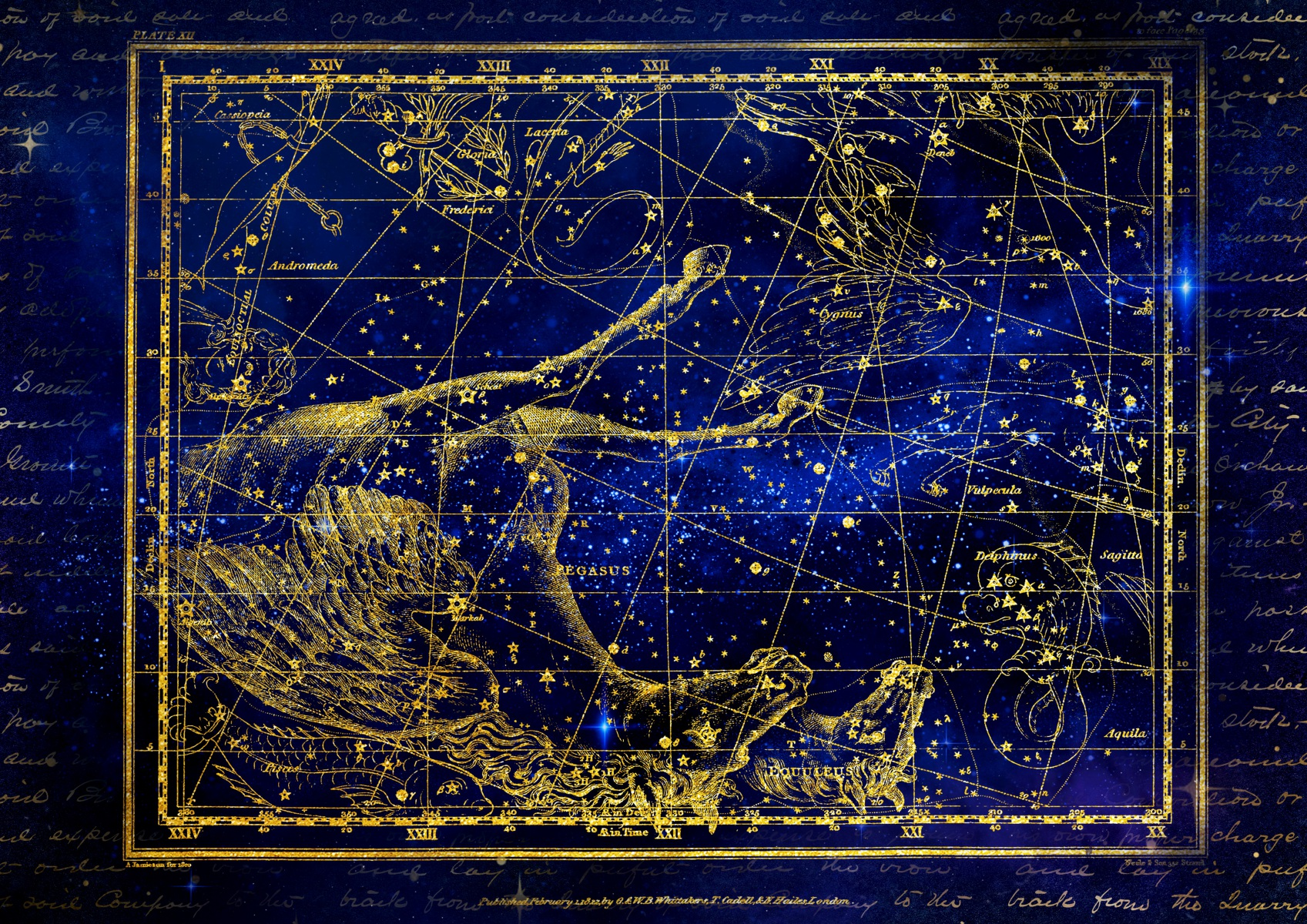 Ancient zodiac signs constellation dolphin and horse