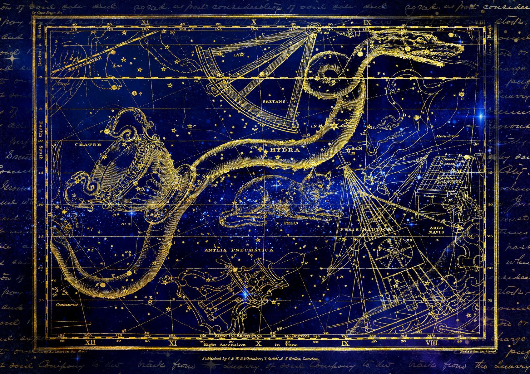 Ancient zodiac signs constellation cat and snake