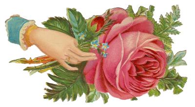 Vintage Rose in der Hand